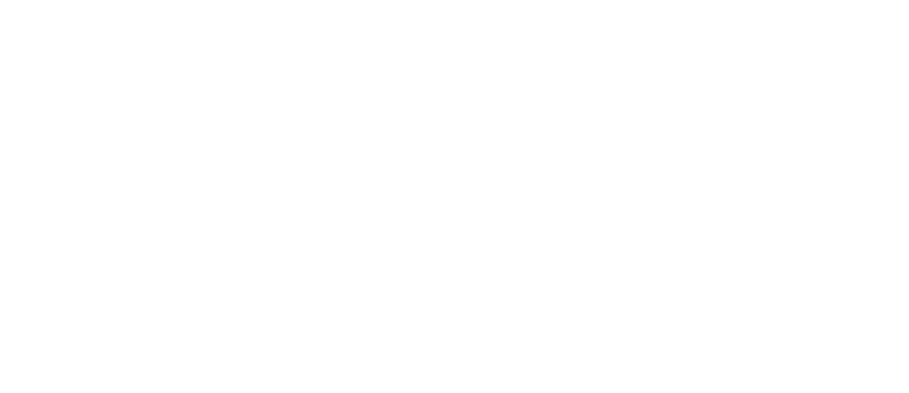 Helga Rohra - trotzDEM
